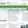 艾普网(IEPOA.CN)绿色凤凰网首页资讯类Destoon V5.0模板